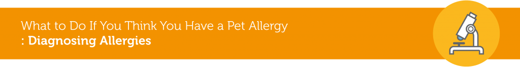 pet-allergies-03
