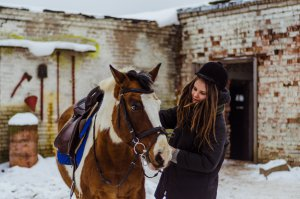 girl petting horse in snow