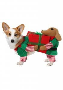 Santa's little helper dog costume with extra elf